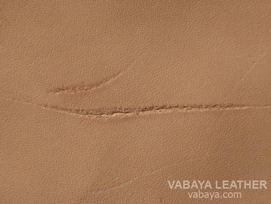 Vết sẹo do dây thép gai gây ra trên bề mặt da mộc
