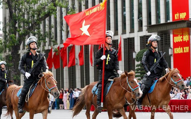 Ngựa mông cổ trang bị cho cảnh sát cơ động