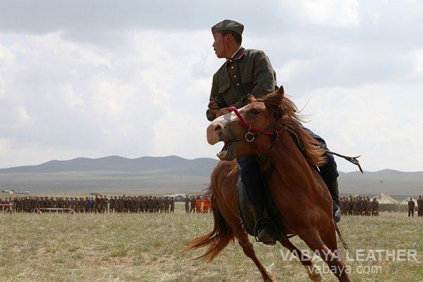 ngựa mông cổ trong quân đội