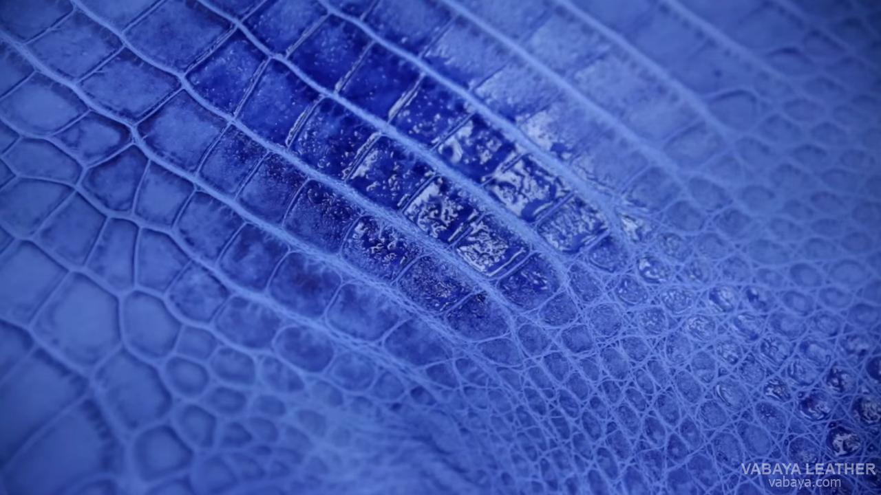 Phun tạo màu cho da cá sấu