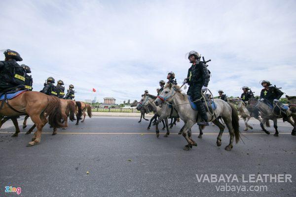 ngựa việt nam diễu hành