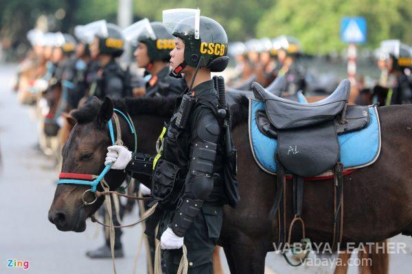 kỵ binh Việt Nam